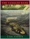9780-9815194-7-0 : wissenschaftliche Bücher bei academic-books